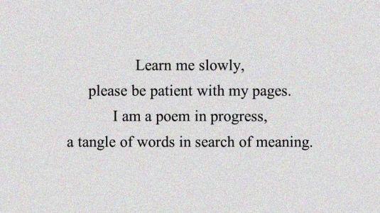 learn me slowly